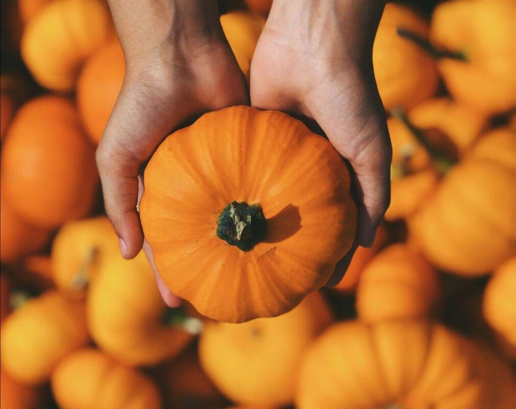 Les micronutriments ces alliés pour l'automne