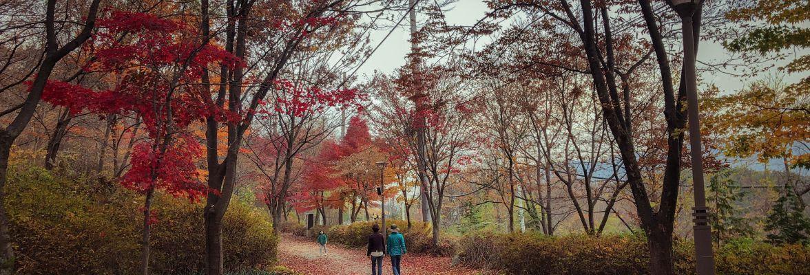5 bonnes habitudes pour affronter l'automne