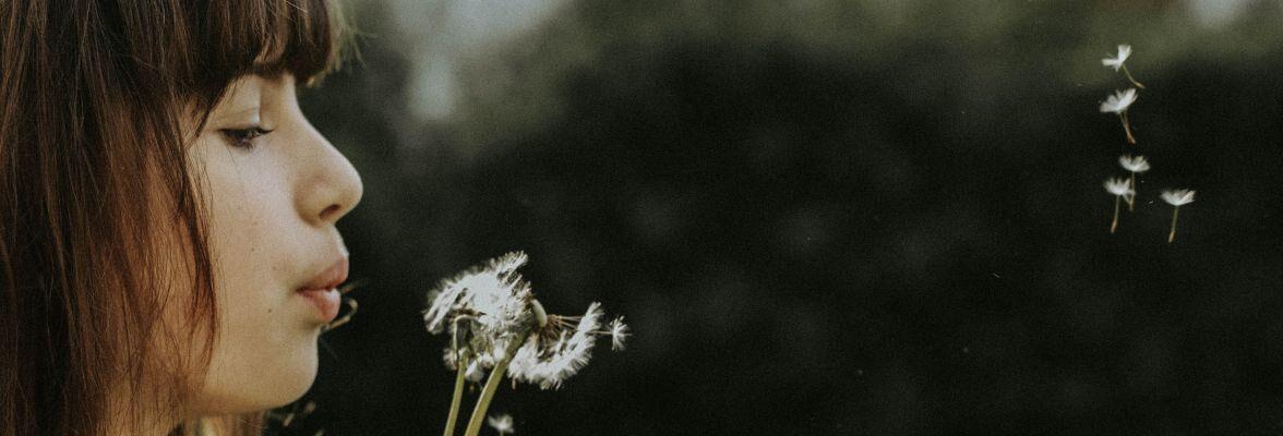 La vie intérieure : qu'est-ce que le SII ?